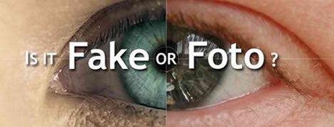 Fake or Real Visual Quiz by Alias