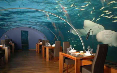 Hilton Maldives Resort Undersea Restaurant