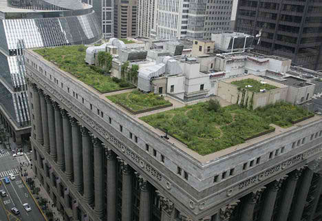 Going Green - Chicago City Hall