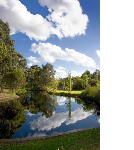 backyard outback perth scene park lake australia