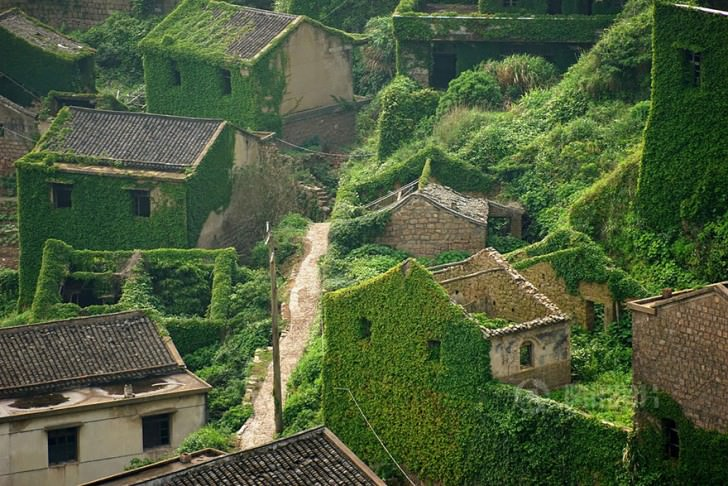 Abandoned Chinese Village On Goqui Island Swallowed By Mother Nature